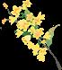 【广州·番禺区】节假日可用!¥49.9抢【喜出望外生态乐园】2大1小套票,打卡网红滑草!机动游戏、网红滑草、捞鱼、喂小动物...吃喝玩乐一站式满足你!