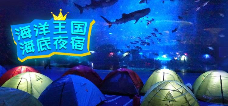 珠海长隆海洋王国鲸鲨馆夜宿
