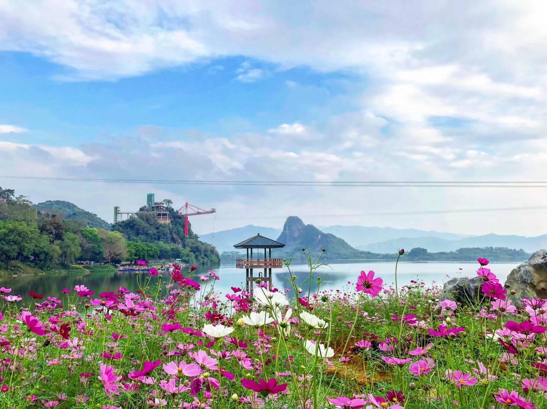 清远宝晶宫天鹅湖度假酒店茶语温泉 | 成人票