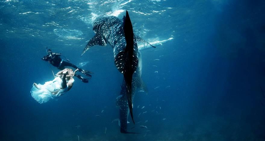 半自助游 与鲸鲨共舞--菲律宾杜马盖地精彩原生态6天4晚游(广州往返)
