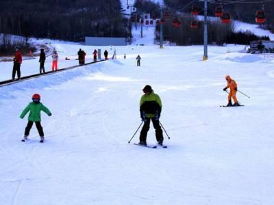 东北六天游:哈尔滨亚布力滑雪