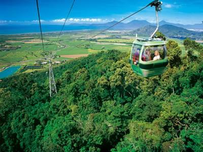 热带雨林保护区