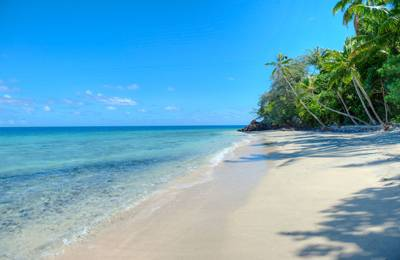 斐济植物岛度假村-沙滩