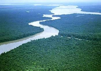 美洲旅游景点_巴西玛瑙斯亚马逊河
