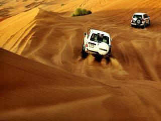 埃及10日游_阿拉伯沙漠冲沙