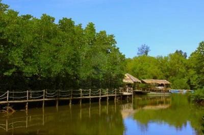 沙巴五天游_马来西亚沙巴-龙尾湾红树林生态保育区