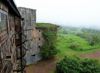 肯尼亚10天游_肯尼亚阿布戴尔树顶酒店