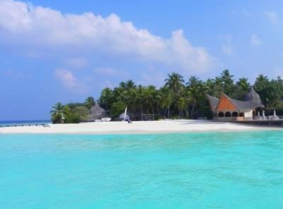 马尔代夫美人蕉岛