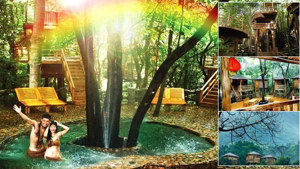 英德树上彩虹温泉