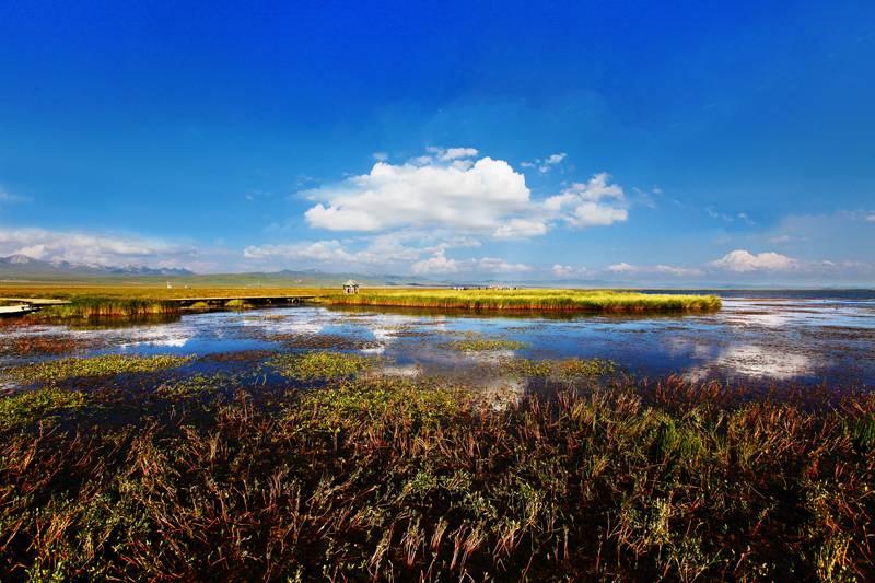 若尔盖热尔大草原的湖泊:花湖