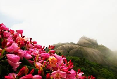 桂林三天游_猫儿山风景区
