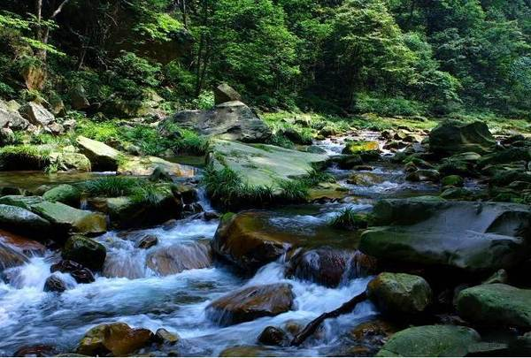 金鞭溪风景区是张家界的黄金旅游区,全长5700米