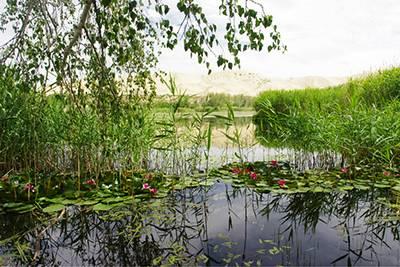 新疆7天游景点_新疆白沙湖