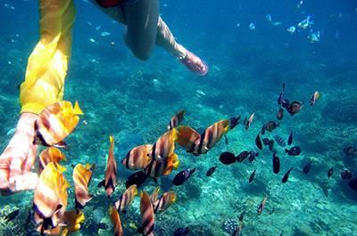菲律宾长滩岛5天3晚浪漫之旅,当地五星,市区游 半天岛