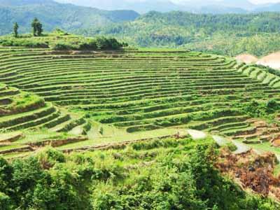 梅州三日游:岭南印象园