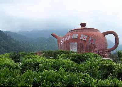 梅州三日游:珠海石博园