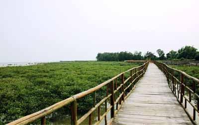 越南五天游:东兴七彩贝丘湾景区