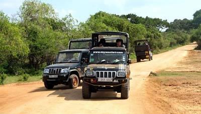 斯里兰卡五天游_维拉帕图国家公园