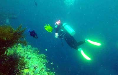 仙本娜5天游_马达京岛和丁巴丁巴岛