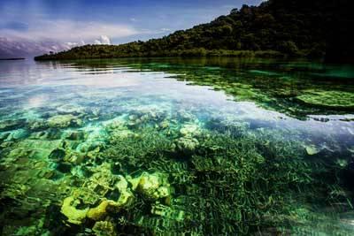 仙本娜5天游_敦沙卡兰海洋公园