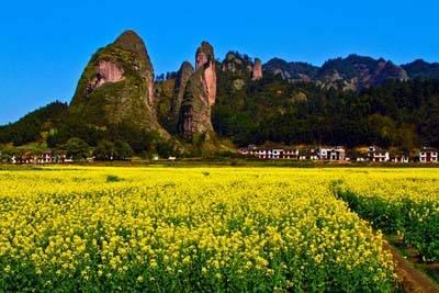 桂林3天游景点_崀山油菜花海