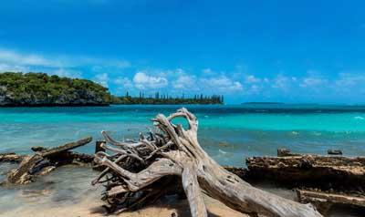 新喀里多尼亚+斐济11天游:松岛