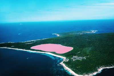 西澳8日游:澳大利亚-粉红湖