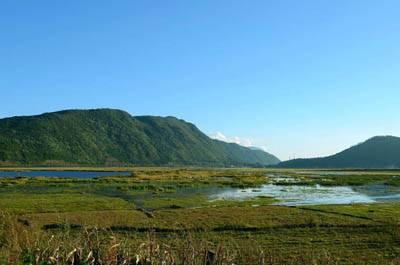 云南6天游:云南北海湿地
