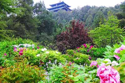 北京5天游_北京故宫