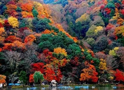 日本7天游:日本环球影城