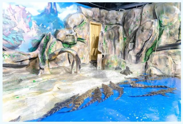 【东莞】【暑期特惠】东莞海立方环游城99元亲子票=海洋生物观赏+精彩剧场演绎+特色海洋课堂+酷玩职业体验!