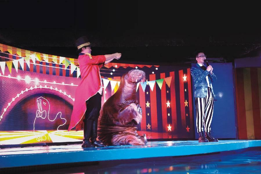 【广州·天河区正佳】【海洋馆奇妙夜】99元限时抢购~正佳极地海洋世界夜场特惠票(18:00-21:30)