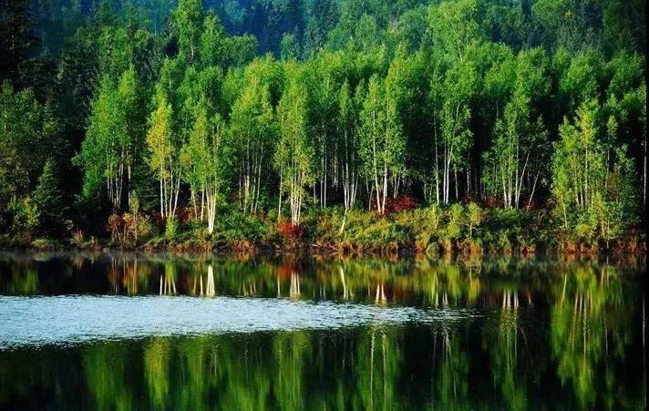 【三水·绿湖酒店泳池门票】这个夏天,我们一起,游泳去!限时抢购19.9元佛山三水绿湖度假酒店单人游泳票~~1.2米以上人群适用~~