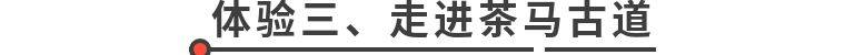 【东莞】【暑期研学套餐】全家淘票!冲向美好生活,抢购¥1299元=2大2小无限嗨玩,含五星级高级房+4份早餐+3D高空玻璃桥+水上乐园+130元游乐金/人+3D花海+亲亲动物园+赠送亲子保龄球体验!相约东莞隐贤山庄嗨翻天,畅享一站式游乐度假体验。