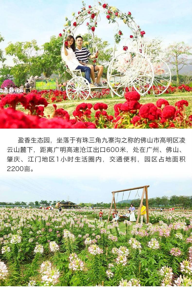 【佛山】高明盈香生态园成人票(指定日期提前一天下单使用)