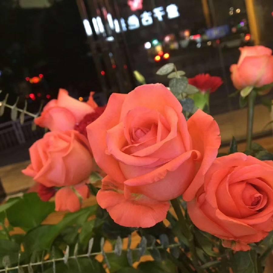 【深圳·鲜花直送】520专属花束!99元抢268元『花漫时光』11支粉佳人/11支红玫瑰(2选1)