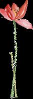 【深圳南山.门票】39.9元起抢80元青青世界1大1小亲子票,限量销售,带上小朋友与大自然来个亲密约会~