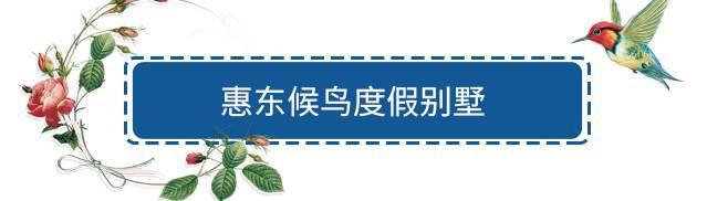 【惠州·别墅】春节周末可用!平日一口价!388元抢1688元『惠东候鸟度假酒店』印度洋温泉泳池别墅2房1厅1套!