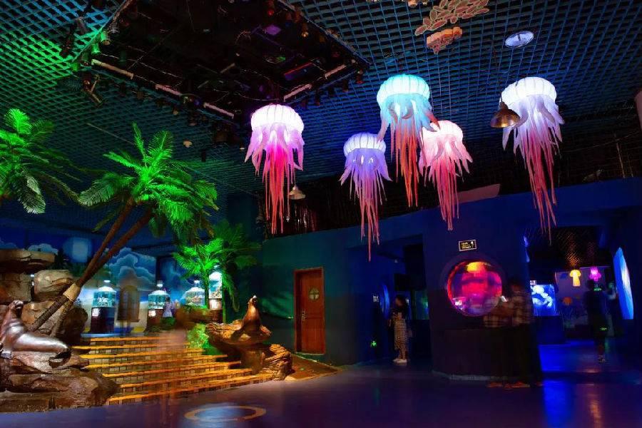 北京太平洋海底世界夜场门票