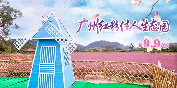【广东广州】我只想徜徉在这片花海~9.9元红粉佳人生态园门票,如梦似幻、朦胧又唯美,着实充满遐想!