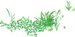 【广东·河源爆品】¥498抢购河源客天下国际大酒店山景房,一票畅玩温泉小镇、网红玻璃桥、水上乐园、冰雪乐园等近十种娱乐项目!一站式吃喝玩乐,亲子度假首选!
