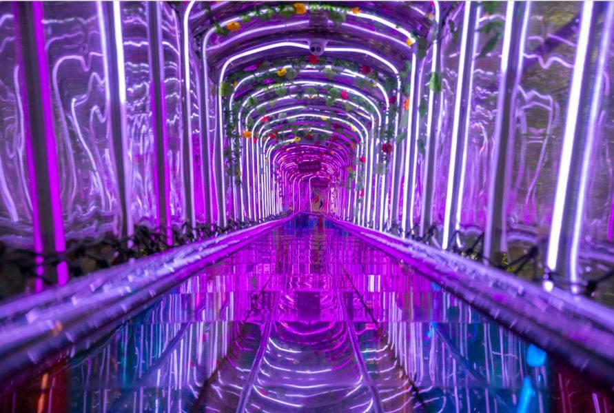 【限时抢购】仅售69.9元(价值188元套票)天子山瀑布大门票+天子飞龙玻璃桥+动感滑道+嗨8欢乐王国