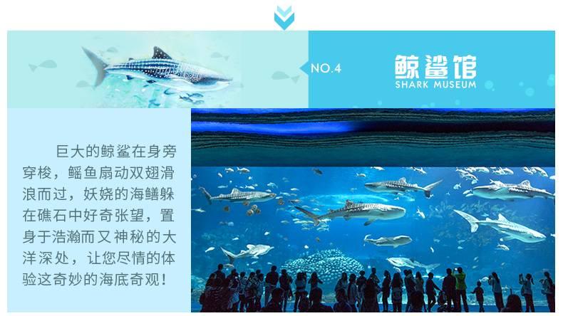 珠海长隆海洋王国青少年/学生票(提前1天可订)