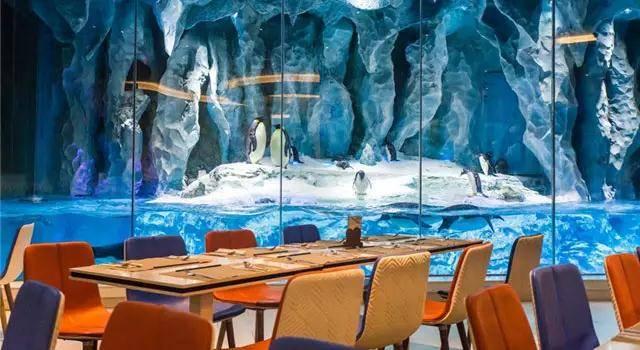 【春游长隆】¥1618起入住企鹅酒店,奇遇极地世界,享受自助晚餐的美好时光,惊喜特惠还含海洋王国两日无限次进出门票!~