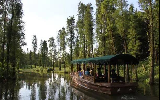 【佛山】全面升级!19.9抢佛山南海大湿地公园1大1小门票,十几项机动游戏+湿地探险+森林牧场+亲子游乐项目,N多好玩项目;平日周末不加收;先到先得