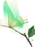 【已开园】【广州·樱花季】宝墨园+南粤苑套票亲子票(1大1小)(樱花节特惠预售)
