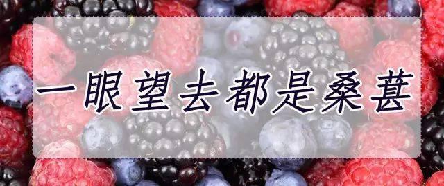 【深圳】即买即用,带上孩子一起出门采摘踏青吧,桑葚+蔬菜/圣女果采摘,29.9元限时抢购2大2小采摘家庭套票!