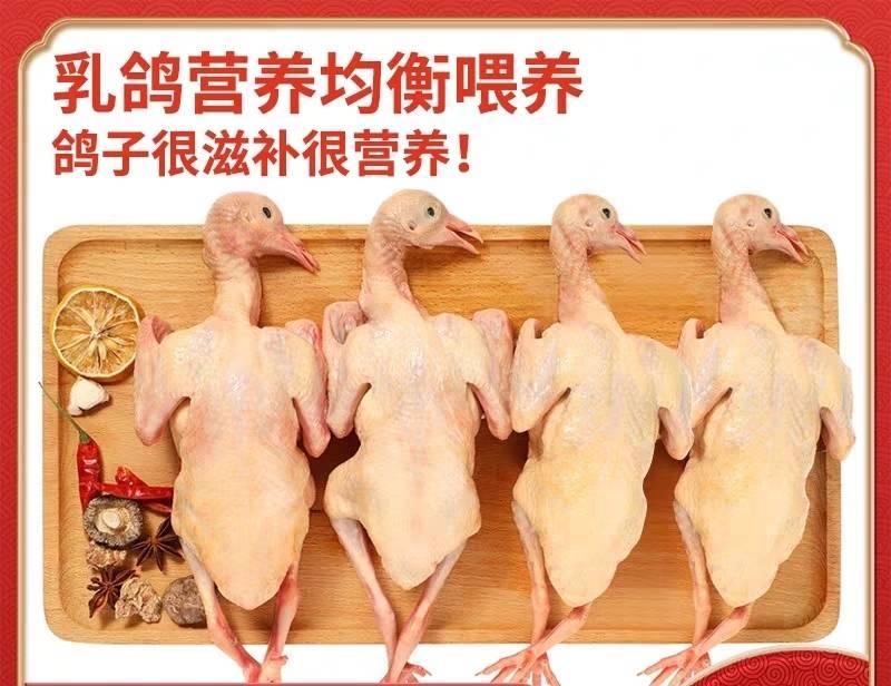【广东】极品乳鸽!10只乳鸽只需199元,广东省内顺丰包邮,保证新鲜,每天现杀现寄,营业执照+食品经营许可证+动物防疫苗合格证。放心吃!