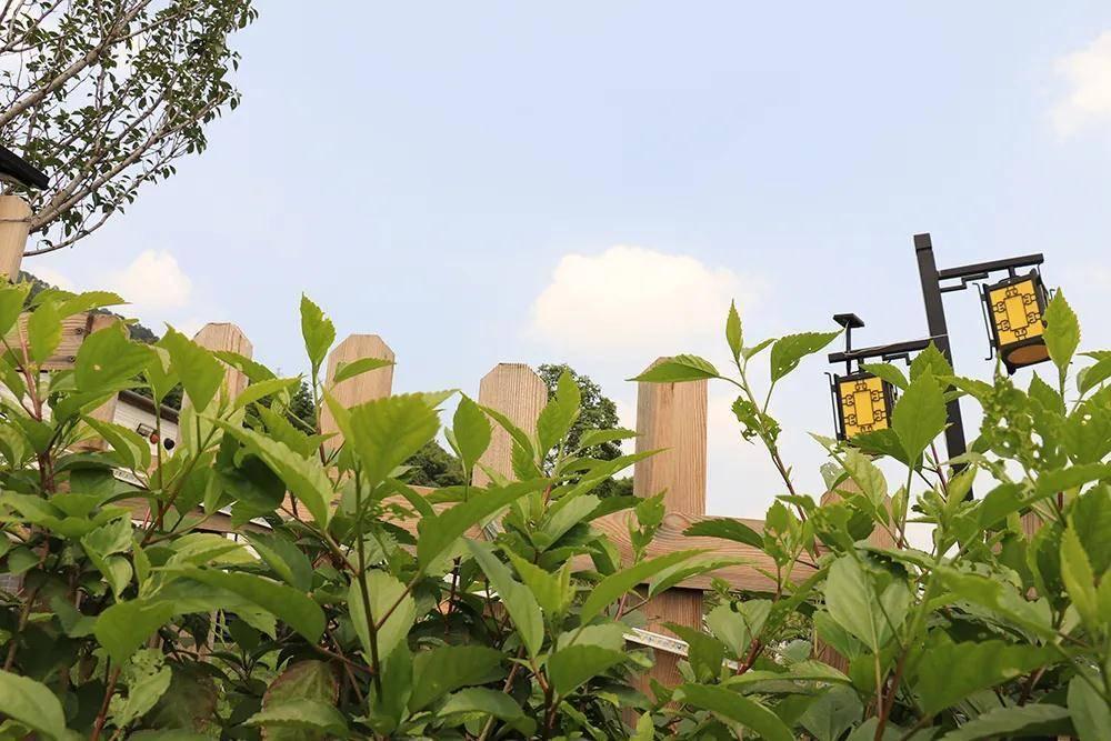 【肇庆.中游房车露营基地】468元抢购中游国际房车基地4人房车1间1晚/全营地打卡拍照
