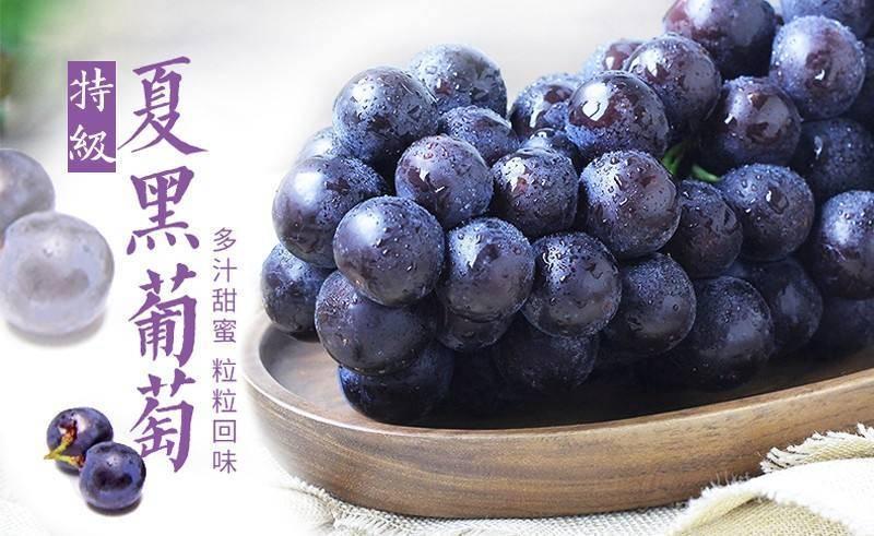 【广州白云】16.8元抢2大1小生态葡萄采摘,送一斤葡萄带走,通用不加价